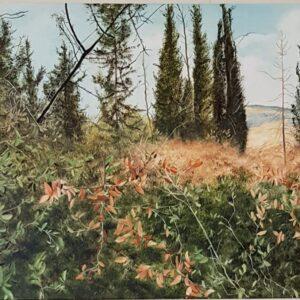"""רוני וולדנברג, """"אחרי הגשם הראשון"""", 50X70 שמן על בד, 052-3902640 roni22wol@gmail.com"""